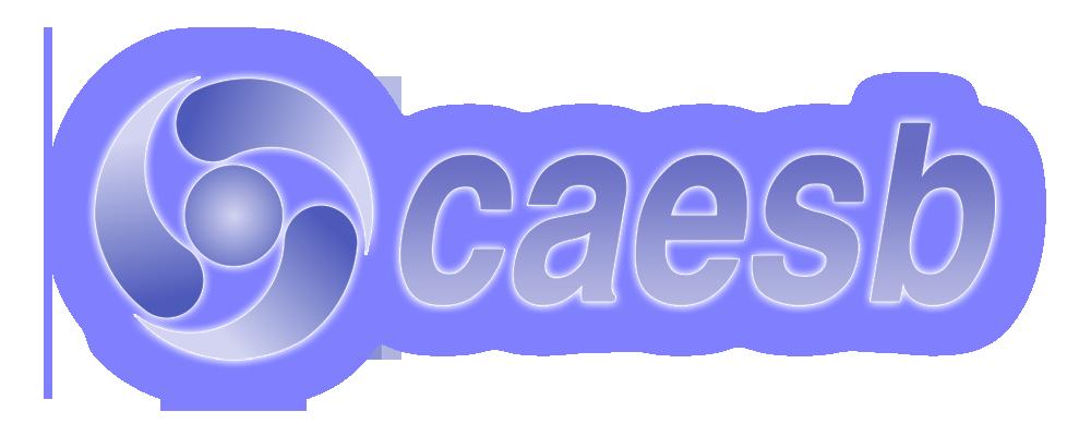 Resultado de imagem para faturamento da caesb